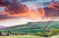 Panoramic sunset of of famous hill of cypresses in Tuscany, Ital Royalty Free Stock Images