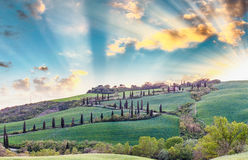 Panoramic sunset of of famous hill of cypresses in Tuscany, Ital Stock Photo