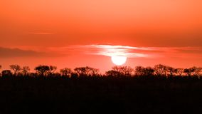Sunset in Kruger National Park Royalty Free Stock Photography