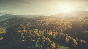 Panoramic mountain forest slope scenery aerial view royalty free stock images