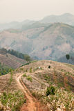 Panoramic sunset from mountain view. Route trail on the mountain - mountain scape in the north of Thailand Royalty Free Stock Photo