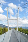 Panoramic Suspension Bridge Sigriswil Stock Images