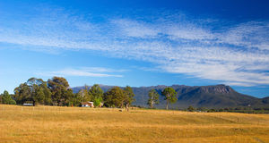 Panoramic Tasmanian Landscape Royalty Free Stock Photography