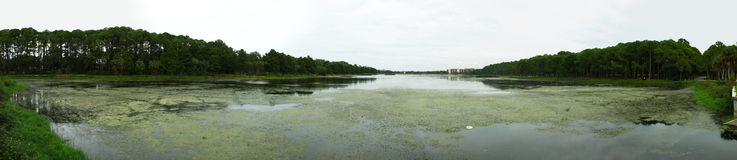 Panoramic of Taylor Lake. This is a panoramic of the whole Taylor Lake in Largo, Florida stock photo