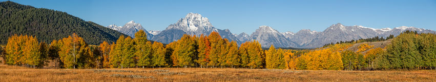 Panoramic of Tetons in Fall Royalty Free Stock Photo