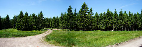 Panoramic in the Thuringian Forest Royalty Free Stock Photo
