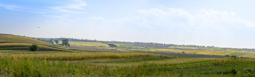 Panoramic agricultural fields in autumn. Panoramic Ukrainian agricultural fields in autumn. Asphalt road through them and bird in the sky stock images