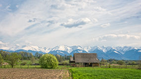 Panoramic veiw of snowy mountains Royalty Free Stock Photography