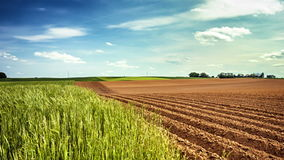 Panoramic view of agricultural fields, slider shot stock video