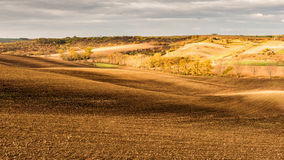 Panoramic view of agriculture fields, nature landscape Royalty Free Stock Images