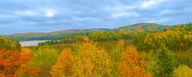 Panoramic view at Algonquin Park in Ontario, Canada Stock Photos