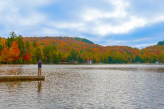 Panoramic view at Algonquin Park in Ontario, Canada Royalty Free Stock Images