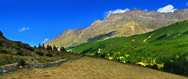 Panoramic view on alpien mountains with hayfield. Panoramic view on alpien rocks mountains with hayfield Stock Image