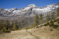 Panoramic view on the alps Royalty Free Stock Photos