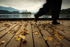 Panoramic view of amazing Bled Lake in Slovenia in autumn time w royalty free stock photos