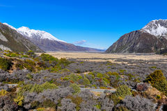 Panoramic view in Aoraki/Mount Cook National Park, New Zealand Royalty Free Stock Image
