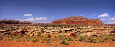 Panoramic view of Arizona desert stock images