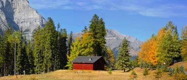 Autumn landscape in Banff national park royalty free stock image