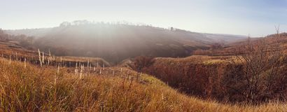 Panoramic view of autumn meadow at sunset.  royalty free stock images