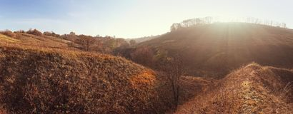 Panoramic view of autumn meadow at sunset.  royalty free stock photos