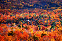 Panoramic view of autumn mountain Stock Photo