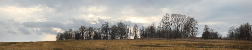 Panoramic view of the autumn woods and fields Stock Photos