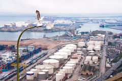 Panoramic view of Barcelona port with seagull on the first plane. Stock Photography