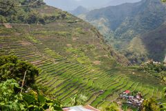 Panoramic view of the Batad rice field terraces in Ifugao province, Banaue, Philippines Stock Photos