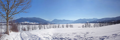 Panoramic view bavarian alps in winter Royalty Free Stock Image