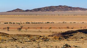 Panoramic view of a beautiful coloured semi-desert landscape royalty free stock image