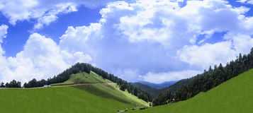 Panoramic view of beautiful landscape of Janjehli Valley near Sh Royalty Free Stock Image