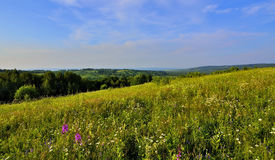 Panoramic view of beautiful summer landscape Stock Photos
