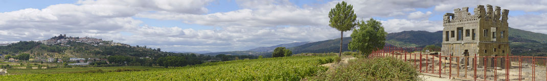 Panoramic view of Belmonte. Panoramic view iof Belmonte and Centum Cellas tower in Portugal Royalty Free Stock Photos