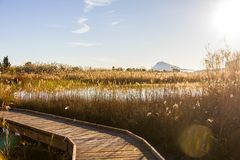 Panoramic view of a bird observatory, in the wetlands natural park La Marjal in Pego and Oliva. Spain. Montgó Mountain is the background stock images