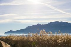 Panoramic view of a bird observatory, in the wetlands natural park La Marjal in Pego and Oliva, Spain. Segaria Mountains is the background royalty free stock photos