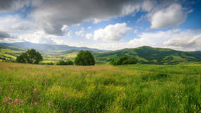 Panoramic view of the blooming flowers, summer meadow in the mountains and blue cloudy sky. stock image