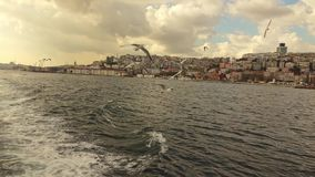 Panoramic view from boat on a flying seagulls and sityckype bank of Istanbul. Slow motion, Full HD video, 240fps, 1080p. Flying seagulls birds behind tourist stock video