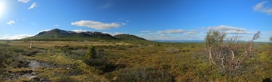 Panoramic view of bogs and Mountain Ansaett in Sweden Royalty Free Stock Photo