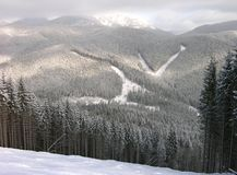 Panoramic view of Bukovel ski tracks, Ukraine Royalty Free Stock Photo
