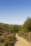 Panoramic view with Camino de Santiago mountain road in Castilla y Leon Royalty Free Stock Image