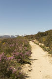 Panoramic view with Camino de Santiago mountain road in Castilla y Leon Royalty Free Stock Photography