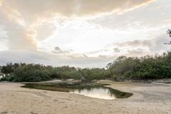 Panoramic view of the Campeche Beach, in Florianopolis, Brazil stock photo