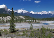 Panoramic view to Canadian Rockies Mountains stock photography