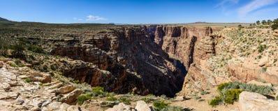 Little colorado river navajo tribal park. Panoramic view of canyon in Little colorado river navajo tribal park in Arizona, USA. Plateau around canyon covered Royalty Free Stock Photos