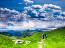 Carpathian landscape Stock Photography