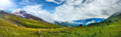 Panoramic view on Caucasus mountains with Kazbek mount peak royalty free stock image