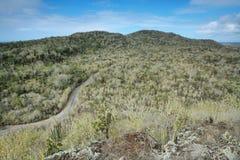 Panoramic view from cerro Orchilla