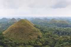Panoramic view of the Chocolate Hills in Bohol, Philippines. Royalty Free Stock Photos