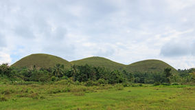 Panoramic view of the Chocolate Hills in Bohol, Philippines. stock photography