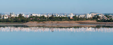 Panoramic view of the city of Larnaca, CYPRUS Royalty Free Stock Images
